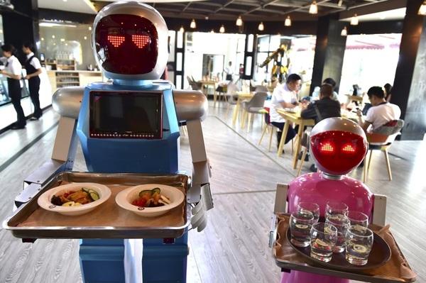 Robot phục vụ trong nhà hàng