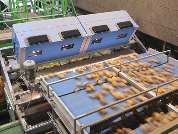 Hệ thống phân loại khoai tây thông minh TOMRA