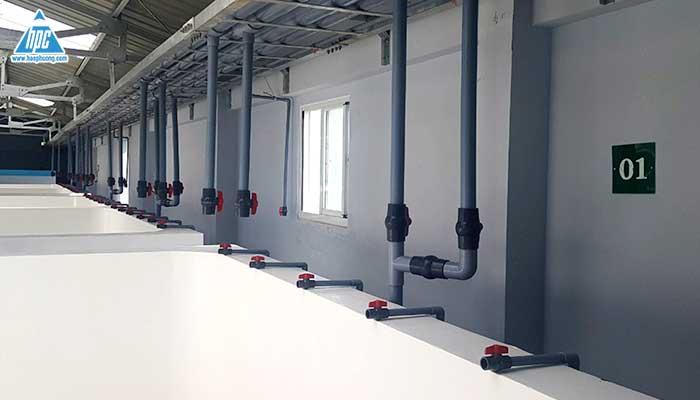 Hệ thống ống nước nhà ươm tôm 2