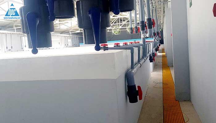 Hệ thống ống nước nhà ươm tôm 1