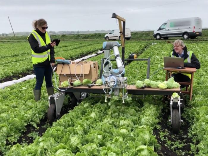 Ứng dụng AI vào thu hoạch nông sản