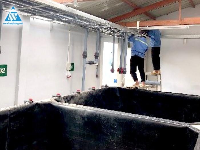 Thi công đường ống cấp nước nhà ươm tôm cải tạo 1
