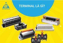 Terminal là gì?