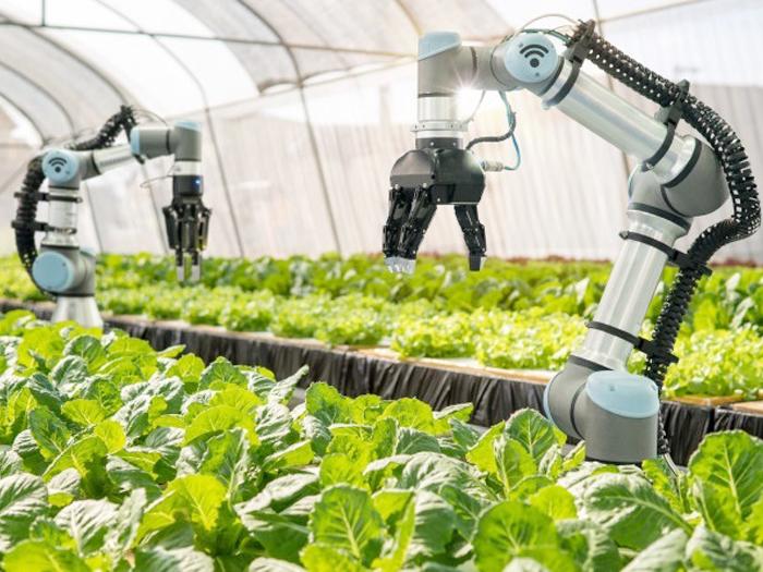 Cách mạng hóa ngành nông nghiệp với công nghệ 5G