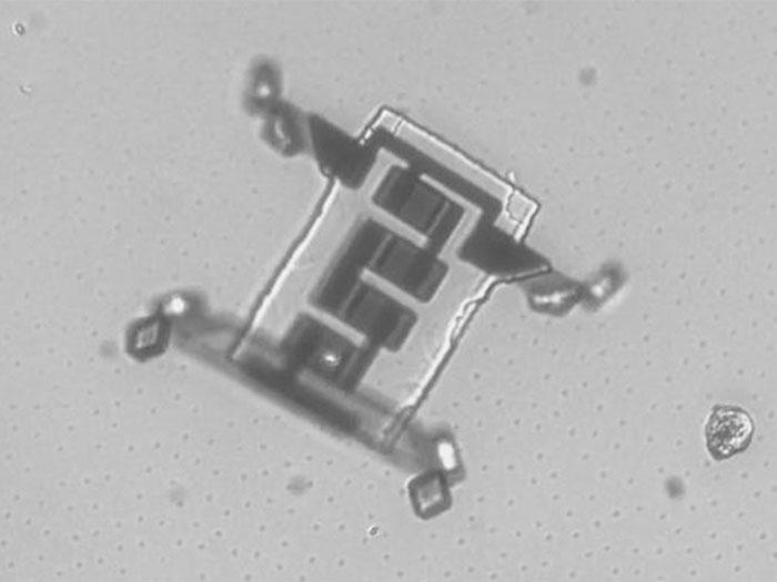 Xuất hiện robot siêu nhỏ có thể di chuyển bằng công nghệ laser